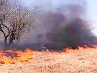 तेज हवा ने आग को दिया विकराल रुप, 2 किलोमीटर क्षेत्र में फैली आग पर 5 घंटे बाद पाया जा सका काबू|उदयपुर,Udaipur - Dainik Bhaskar