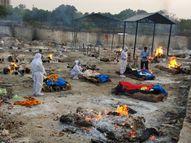 इंदौर में 1552 मरीज मिले, 6 मौत, तीन मुक्तिधाम में 24 घंटे में 23 शव पहुंचे; जबलपुर में 552 और उज्जैन में 317 नए संक्रमित मिले|भोपाल,Bhopal - Dainik Bhaskar