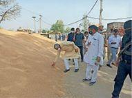 कृषि मंत्री ने अनाज मंडियों में व्याप्त समस्याओं का जल्द समाधान कराने का दिया आश्वासन|गुड़गांव,Gurgaon - Dainik Bhaskar