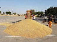 मंगलवार को सरकारी एजेंसियों की तरफ से 44 हजार 837 मीट्रिक टन गेहूं की खरीद की गई|पटियाला,Patiala - Dainik Bhaskar
