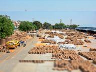रोहतक मंडी से 55500 बैग गेहूं का उठान, 79559 क्विंटल की खरीद, फसल अवशेष जलाने पर प्रशासन करेगा कार्रवाई|रोहतक,Rohtak - Dainik Bhaskar