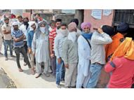 सिटी मंडी में एक दिन में 1 लाख क्विंटल गेहूं आई, 80 हजार क्विंटल की खरीद अम्बाला,Ambala - Dainik Bhaskar