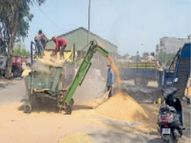 गेहूं खरीद को जमीन के कागज जमा करवाने और रजिस्ट्रेशन की शर्त को लेकर किसानों में एफसीआई के खिलाफ रोष|जालंधर,Jalandhar - Dainik Bhaskar
