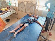 मेव गांव की नाडी में डूबे दो बच्चे; बहन की मौत, भाई गंभीर पाली,Pali - Dainik Bhaskar