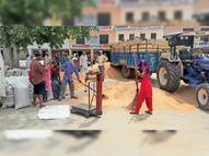 2 दिनों के बाद आज शुरू हुई गेहूं खरीद, पानीपत में 32 हजार व बाबरपुर में खरीदा 27 हजार क्विंटल गेहूं|पानीपत,Panipat - Dainik Bhaskar