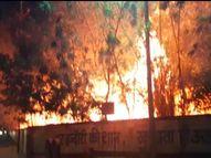 कैंपस के कचरे में लगी आग, शाम 7 बजे अचानक उठी लपटें; एक घंटे में पाया काबू इंदौर,Indore - Dainik Bhaskar