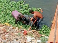 दरगाह जाने के लिए निकली महिला ने लगाई अरपा में छलांग, पानी नहीं था इसलिए बच गई|बिलासपुर,Bilaspur - Dainik Bhaskar