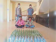 नाकेबंदी में पकड़े गए दो तस्कर, 172 पाव महाराष्ट्र की शराब जब्त|भिलाई,Bhilai - Dainik Bhaskar