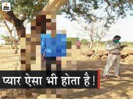 वॉट्सऐप स्टेटस में प्रेमिका की हल्दी लगने वाली फोटो लगाई, लिखा- आज मैं मरूंगा; पेड़ से लटकी मिली लाश|छत्तीसगढ़,Chhattisgarh - Dainik Bhaskar