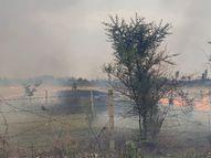 कोरोना कर्फ्यू में भी बिगड़ गई हवा; पराली जलाने और ज्यादा दाह संस्कार से शहर में बढ़ा प्रदूषण|भोपाल,Bhopal - Dainik Bhaskar