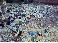 कचरे से पटे खाली मैदानाें से हवा में उड़कर घर-घर पहुंच जा रहा कूड़ा, राेगाें काे दावत|मुजफ्फरपुर,Muzaffarpur - Dainik Bhaskar