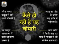 कोरबा के व्यापारी को हुआ था ब्लैक फंगस, पहले नागपुर फिर मुंबई में कराया ऑपरेशन|बिलासपुर,Bilaspur - Money Bhaskar