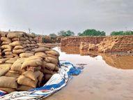 खराब फसलों का मुआवजा नहीं देगा केंद्र, राज्य के प्रस्ताव पर की आपत्ति|रायपुर,Raipur - Money Bhaskar