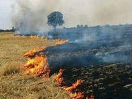 चल रही थी तेज हवा, खेत के पास बनी झोपड़ियों में बढ़ गया आग का खतरा|मध्य प्रदेश,Madhya Pradesh - Money Bhaskar