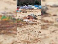 जीवछ के पास श्मशान घाट की नहीं हो रही सफाई|मधुबनी,Madhubani - Dainik Bhaskar