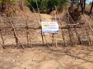 5 गांव, 1300 लोग, ना कोरोना की पहली ना ही दूसरी लहर छू पाई, यहां है कांटों की लक्ष्मण रेखा|होशंगाबाद,Hoshangabad - Dainik Bhaskar