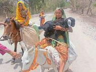 कोरोना को टाइफाइड मान नहीं ले रहे इलाज, मांगरोल में 30 मौतें, ऑक्सीजन का संकट अटका रहा सांसें|चित्तौड़गढ़,Chittorgarh - Dainik Bhaskar