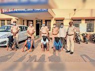 16 लाख लूटने वाले 4 गिरफ्तार, गाड़ियों की लाइट बंद कर पीछा कर रही थी पुलिस, ताकि भनक न लगे|सीकर,Sikar - Dainik Bhaskar