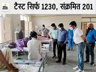 भीलवाड़ा में 201 कोरोना रोगी मिले, सर्वाधिक 64 रोगी शाहपुरा में और सबसे कम सांगानेर में केवल एक|भीलवाड़ा,Bhilwara - Dainik Bhaskar