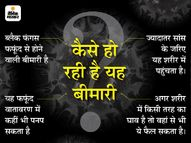 पटना में ब्लैक फंगस के 30 रोगी मिले, 4 की होनी है सर्जरी; दवाओं की कमी से मरीज हो रहे परेशान|पटना,Patna - Dainik Bhaskar