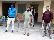 बोलेरो में छिपा कर ले जा रहे थे शराब की पेटी, कोडरमा में तीन आरोपी गिरफ्तार|रांची,Ranchi - Dainik Bhaskar
