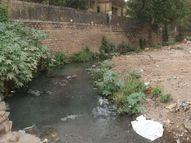 शहर के चोक नाले और टूटीं पुलिया बारिश में जलभराव और हादसे का बनेंगे कारण ग्वालियर,Gwalior - Dainik Bhaskar