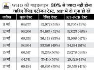 RT-PCR से ज्यादा रैपिड एंटीजन टेस्ट; नतीजा- 37 दिन में सबसे कम केस मिले, संक्रमण दर 13 से घटकर 8% हुई|भोपाल,Bhopal - Dainik Bhaskar