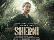 राजनीतिक मुद्दा बनी 'शेरनी' की सच्ची कहानी, विद्या बालन ने फिल्म में बखूबी निभाया है फॉरेस्ट ऑफिसर का किरदार बॉलीवुड,Bollywood - Dainik Bhaskar