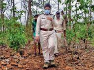 अपराध रोके और माफियाओं को जेल भेजा, 5 महीने में 6 FIR भी कराईं; कई बार बाघ, तेंदुआ से हो चुका सामना|देश,National - Money Bhaskar