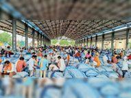 कोरोना इफैक्ट...तमिलनाडु, उप्र, बिहार, आंधप्रदेश में लहसुन की बिक्री में देरी, बारां मंडी में खरीद पर असर|बारां,Baran - Money Bhaskar