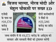 नीरव मोदी, मेहुल चौकसी और विजय माल्या की जब्त संपत्ति ED केंद्र और बैंकों को देगी; 41% कर्ज वसूली की उम्मीद बिजनेस,Business - Dainik Bhaskar