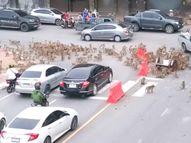 थाइलैंड में 100 से ज्यादा बंदर बीच सड़क पर भिड़े, घंटों बंद रहा ट्रैफिक; कार में दुबके लोग|विदेश,International - Money Bhaskar
