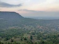 अमरकंटक में राजमेढ़गढ़ पर्यटकों के लिए विकसित होगा; छत्तीसगढ़ पर्यटन मंडल के अध्यक्ष की मांग पर वनमंत्री की सहमति बिलासपुर,Bilaspur - Money Bhaskar