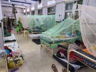 शॉक सिंड्रोम से पीड़ित मिले मरीज, अंग फेल होने का खतरा सबसे अधिक हुआ, मौत के मुंह से जाकर बचा आरक्षक|जबलपुर,Jabalpur - Money Bhaskar