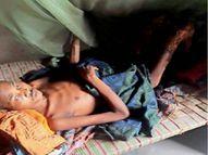 पंडो जनजाति को नहीं मिलता पौष्टिक आहार और न साफ पानी, मरीजों की दिख रहीं पसलियां अंबिकापुर,Ambikapur - Money Bhaskar