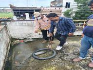 19 नए मरीज, छिड़काव टीमें वॉश एरिया, परिसर, छतों पर जा-जाकर डेंगू पर कर रही प्रहार इंदौर,Indore - Money Bhaskar