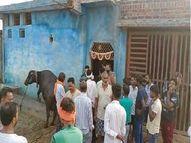 दूध बेचकर जिंदगी का गुजर बसर करते थे बुर्जुग दम्पति, पुलिस ने दोनों शवों को पोस्टमार्टम के लिए भेजा|झांसी,Jhansi - Money Bhaskar