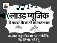 लाउड म्यूजिक सिर्फ पार्टी के काम नहीं आता, डेंगू से बचाने में भी हो सकता है कारगर|हेल्थ एंड फिटनेस,Health & Fitness - Money Bhaskar
