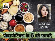 हार्मोन संतुलन से लेकर वजन कम करने में मददगार हैं प्रोबायोटिक फूड, न्यूट्रीशनिस्ट से जानें इनके 6 बड़े फायदे|हेल्थ एंड फिटनेस,Health & Fitness - Money Bhaskar