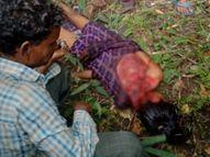 सिवनी में पिता के साथ पालतू पशुओं को चराई गई थी मासूम, तभी जंगली जानवर ने किया हमला सिवनी,Seoni - Money Bhaskar