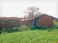 26 गांव के लाेगाें तक डाक पहुंचाने 40 साल से डाकिया अपनी झाेपड़ी में चला रहा था डाकघर|छत्तीसगढ़,Chhattisgarh - Money Bhaskar