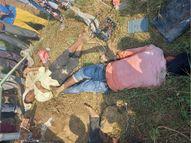 ग्वालियर में खेत पर पानी देने निकले थे दो भाई, ट्यूबवेल के लिए डाले गए तार की चपेट में आए, मौत|ग्वालियर,Gwalior - Money Bhaskar