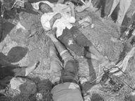 ग्वालियर के भितरवार में करंट लगने से दो किसानों की मौत, चचेरे भाई थे|भोपाल,Bhopal - Money Bhaskar