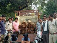 विभाग ने 20 सागौन की लकड़ियां, 2 बाइक, 1 मैजिक सहित 2 तस्करों को किया गिरफ्तार रायसेन,Raisen - Money Bhaskar