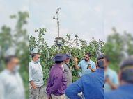 कृषि अनुसंधान के 4 वैज्ञानिकों ने सीताफल-ड्रैगनफ्रूट की खेती देखी जगदलपुर,Jagdalpur - Money Bhaskar