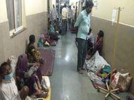 गुना में पहली बार एक ही दिन में आये डेंगू के 32 पॉजिटिव; अस्पताल में जमीन पर कराना पड़ रहा इलाज|गुना,Guna - Money Bhaskar