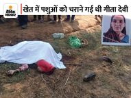 कुल्हाड़ी से महिला का गला भी काटा, हत्यारों को पकड़ने के लिए 100 पुलिसवाले जुटे|जयपुर,Jaipur - Money Bhaskar