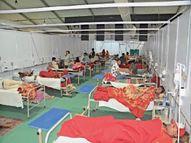 डेंगू के 46 नए मरीज, 85 दिन में 685 रोगियों की पुष्टि, डाेम में 57 मरीज भर्ती बाड़मेर,Barmer - Money Bhaskar