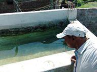 2 दिन में 26 नए डेंगू संक्रमित मिले, मरीजों में 5 माह के बालक समेत 3 बच्चे शामिल|सागर,Sagar - Money Bhaskar