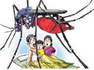 निदेशालय जयपुर में 8 और प्रदेश में 14 मौतें ही बता रहा; एसएमएस अस्पताल में ही 26 लोगों की मौत हो चुकी|जयपुर,Jaipur - Money Bhaskar